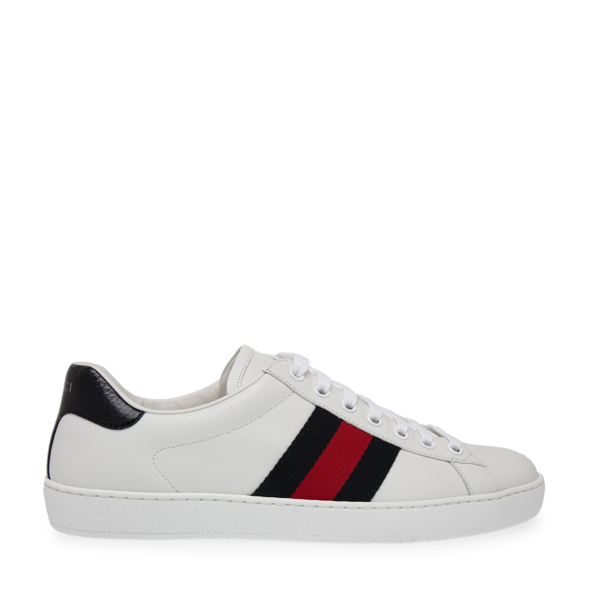 Ace sneakers